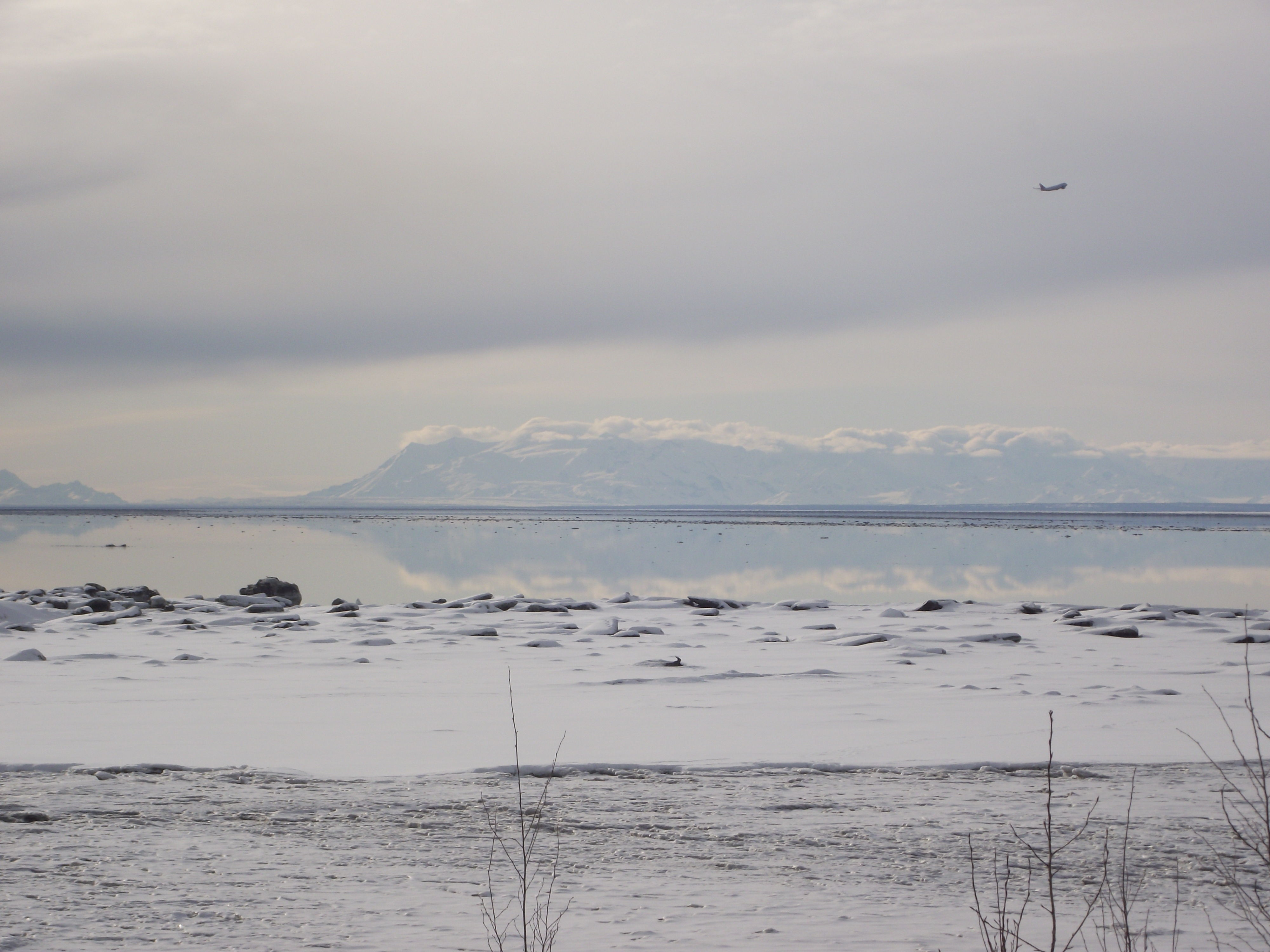 cook-inlet