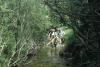 gacnick-slovenia-trout-sampling-a-j-crivelli