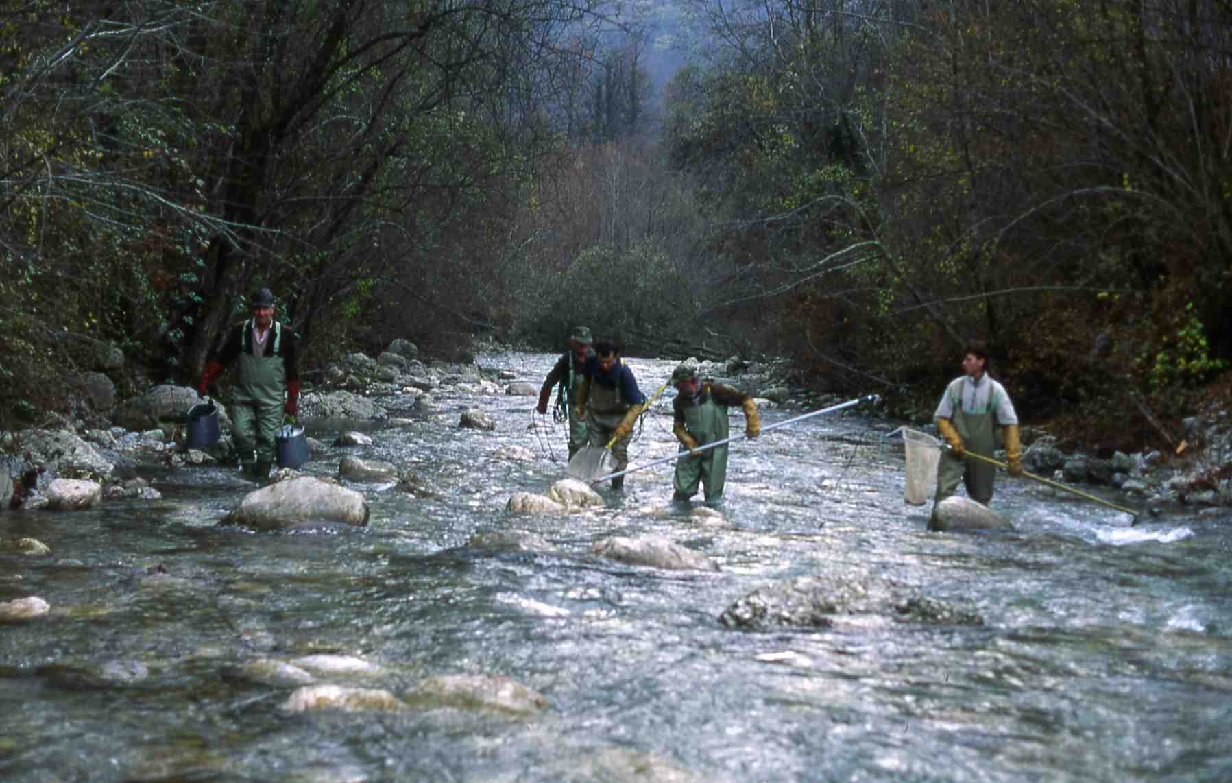 volaja-slovenia-sampling-november-1993-a-j-crivelli